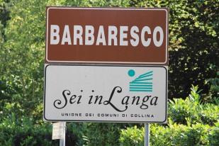 wine region of Barbaresco - Italy