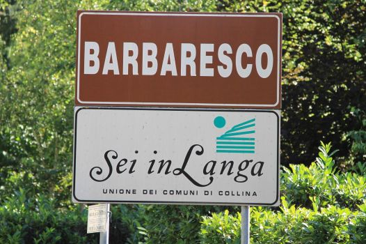 wine region of Barbaresco - Italy