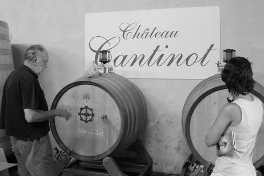wines from Chateau Cantinot in Cotes du Bourg - France