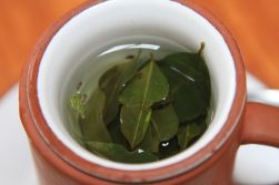 Coca Tea - Cusco, Peru