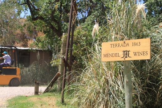 Mendel wines - Lujan de Cuyo, Mendoza