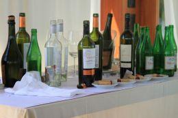 wines of Mendoza, Argentina