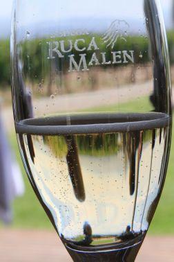 Ruca Malen - Lujan de Cuyo, Mendoza