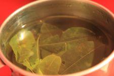 Coca Tea - Machu Picchu Trek, Peru