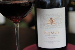 Salentein Primus Pinot Noir - Valle de Uco, Mendoza