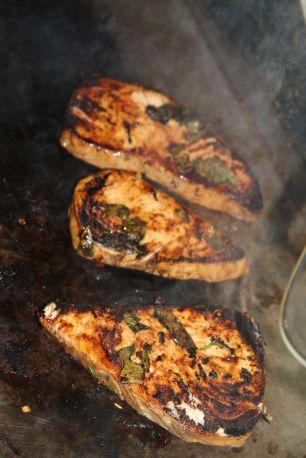 grilled marlin - Coffs Harbor, Australia