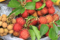 exotic fruits - from the streets of Hoi An, Vietnam